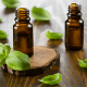 6 Uses Of Basil Essential Oil