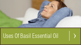 is basil good for your hair