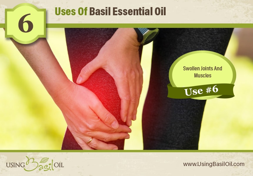 basil oil for inflammation